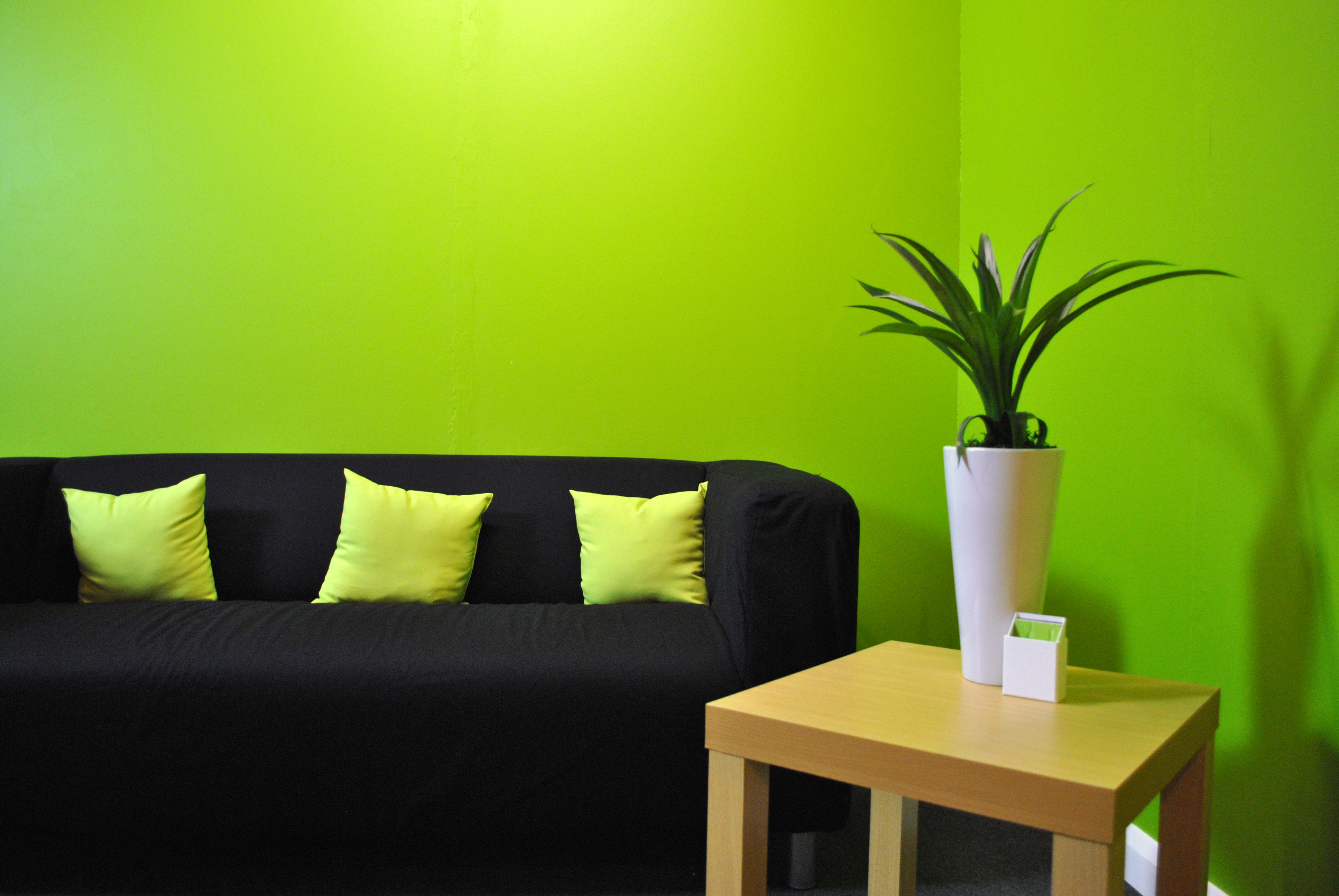 Green room interior design photos for Green interior designs